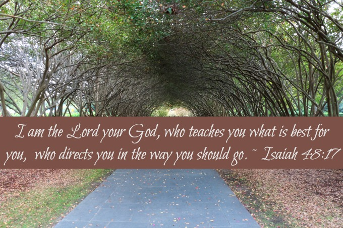 [Photo of a forest road with a Scripture verse superimposed]