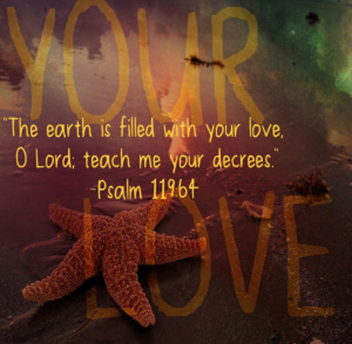 [Photo of some star fish with a Scripture verse superimposed]
